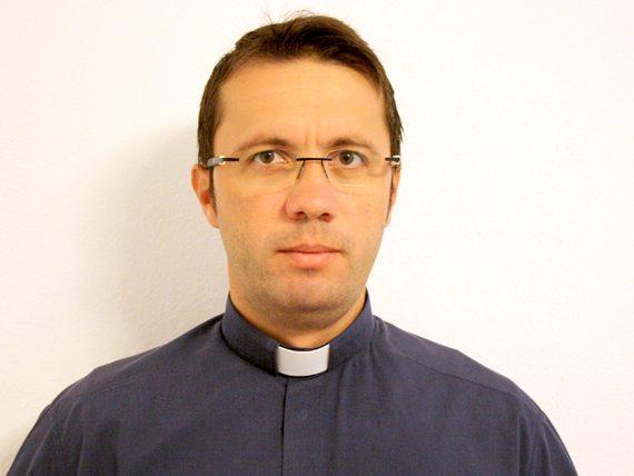 Pr. Sergiu-Alin Pal